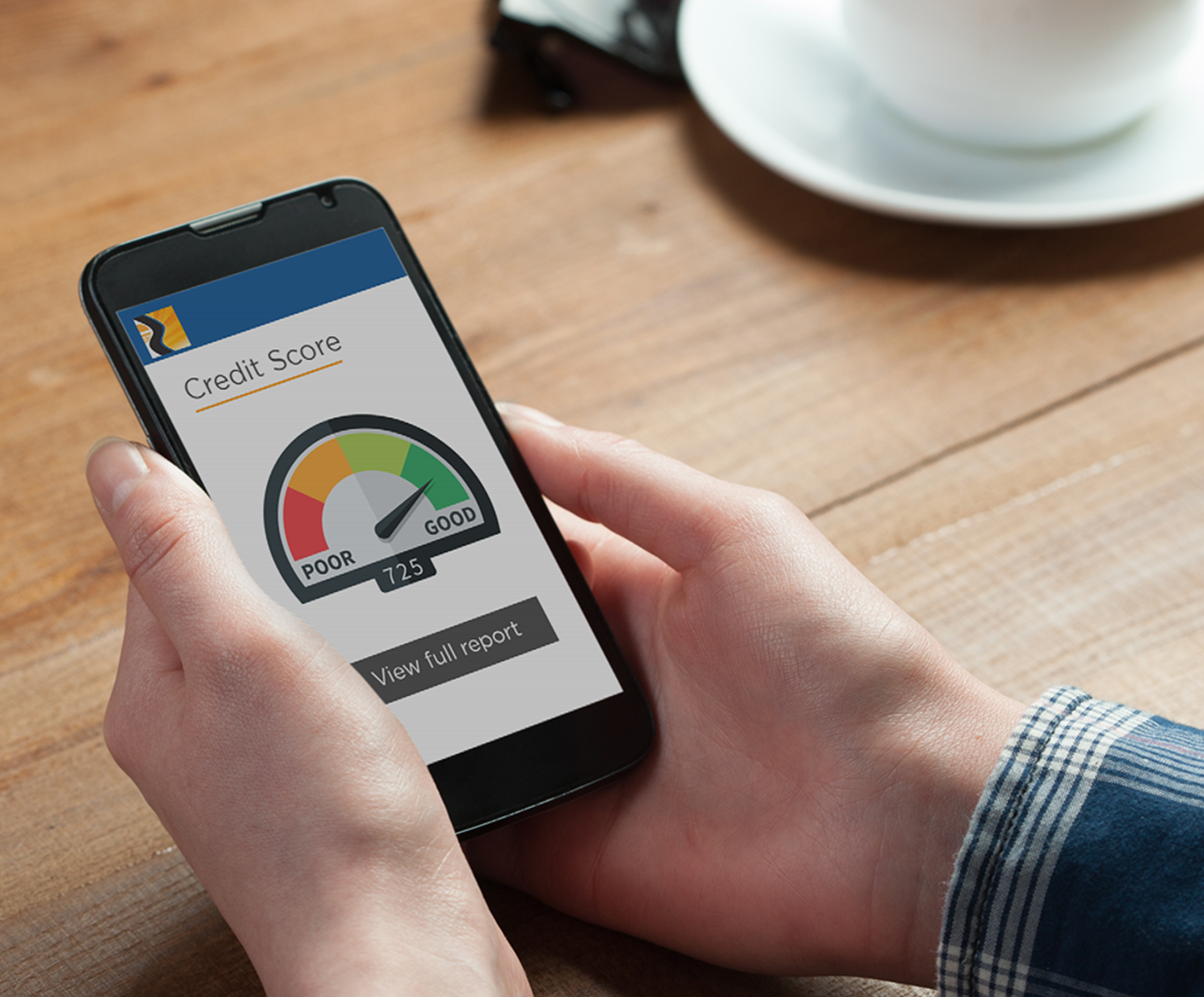 Access your credit reports and score using the Sunbelt Central App at Central Sunbelt FCU, MyLife Checking, Advantage Checking,